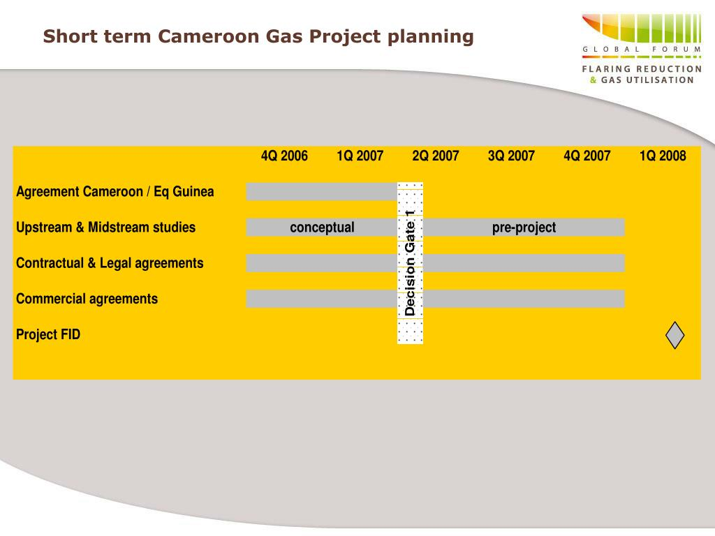 Short term Cameroon Gas Project planning