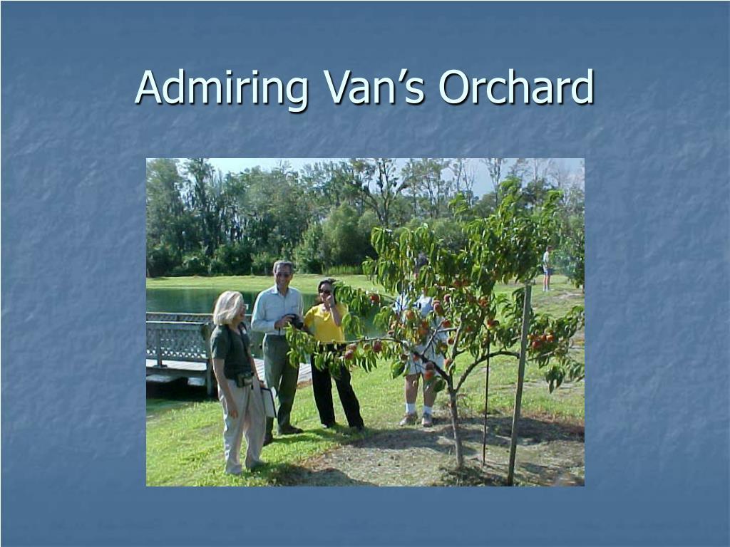Admiring Van's Orchard