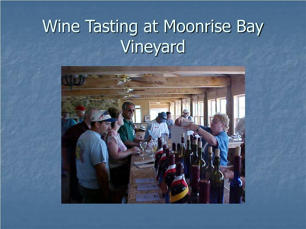 Wine Tasting at Moonrise Bay Vineyard