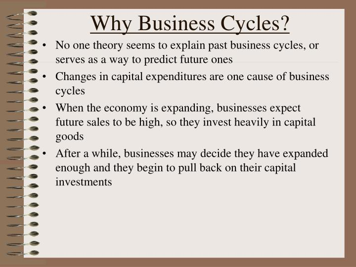 Why Business Cycles?