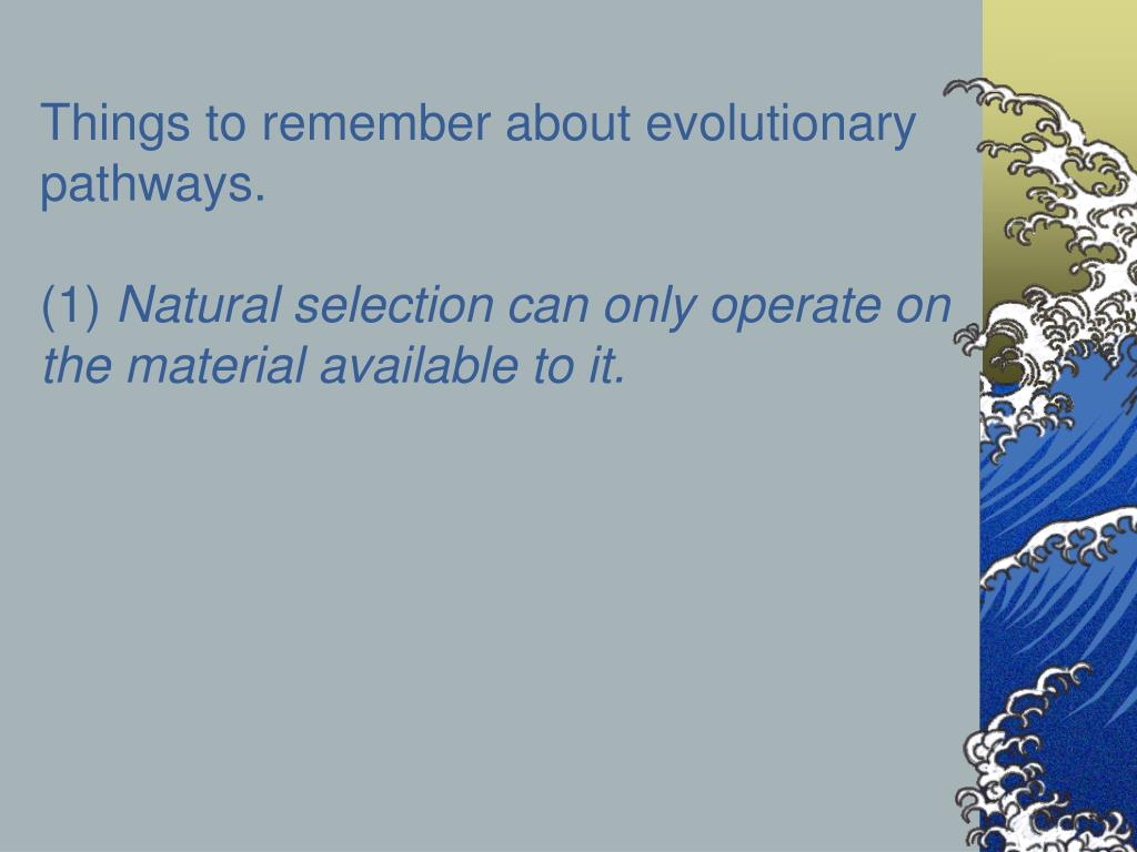 Things to remember about evolutionary