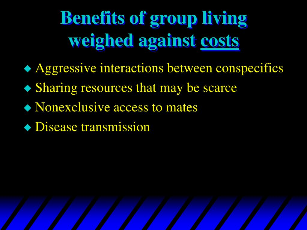 Benefits of group living weighed against