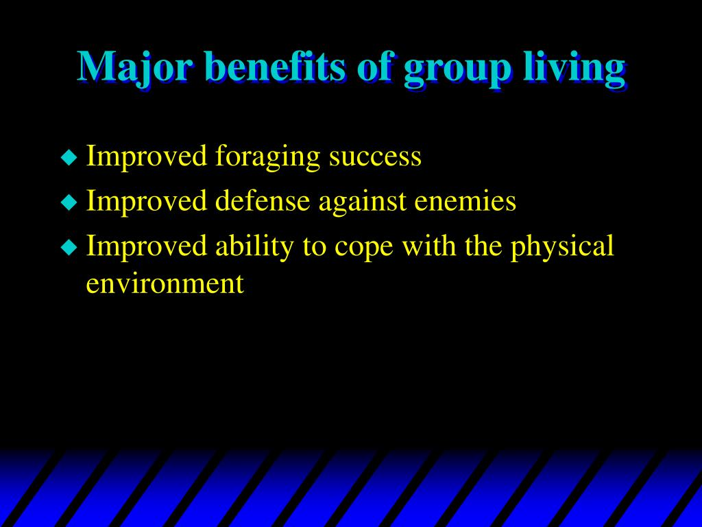 Major benefits of group living