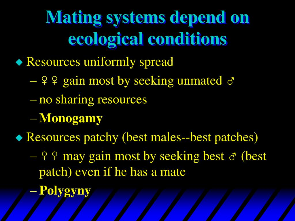 Mating systems depend on ecological conditions
