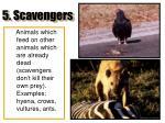 5 scavengers
