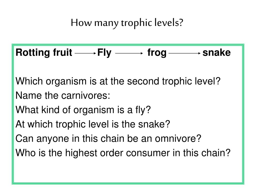 How many trophic levels?