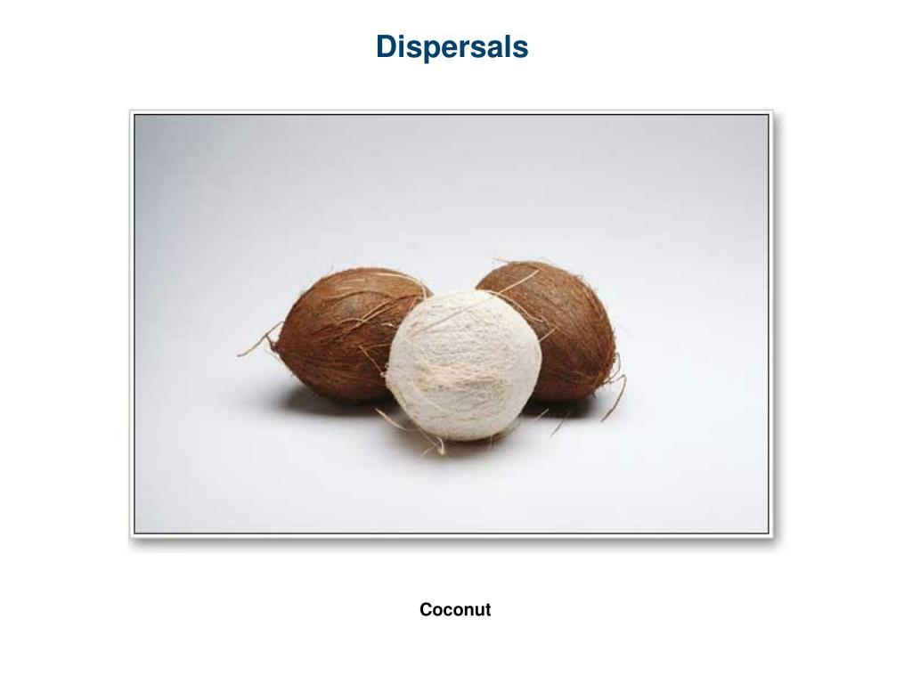 Dispersals