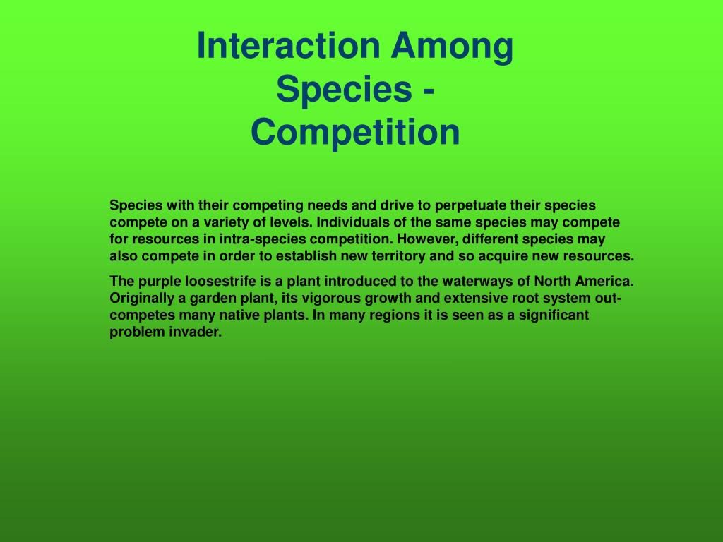 Interaction Among Species - Competition