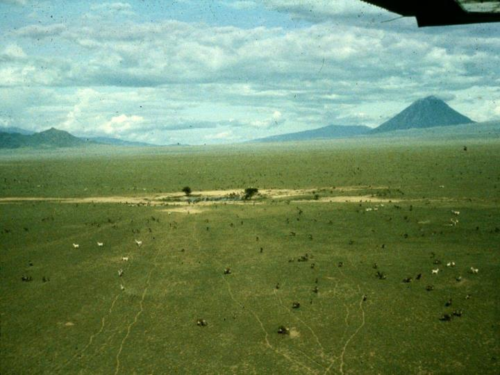 Long term dynamics of the serengeti ecosystem
