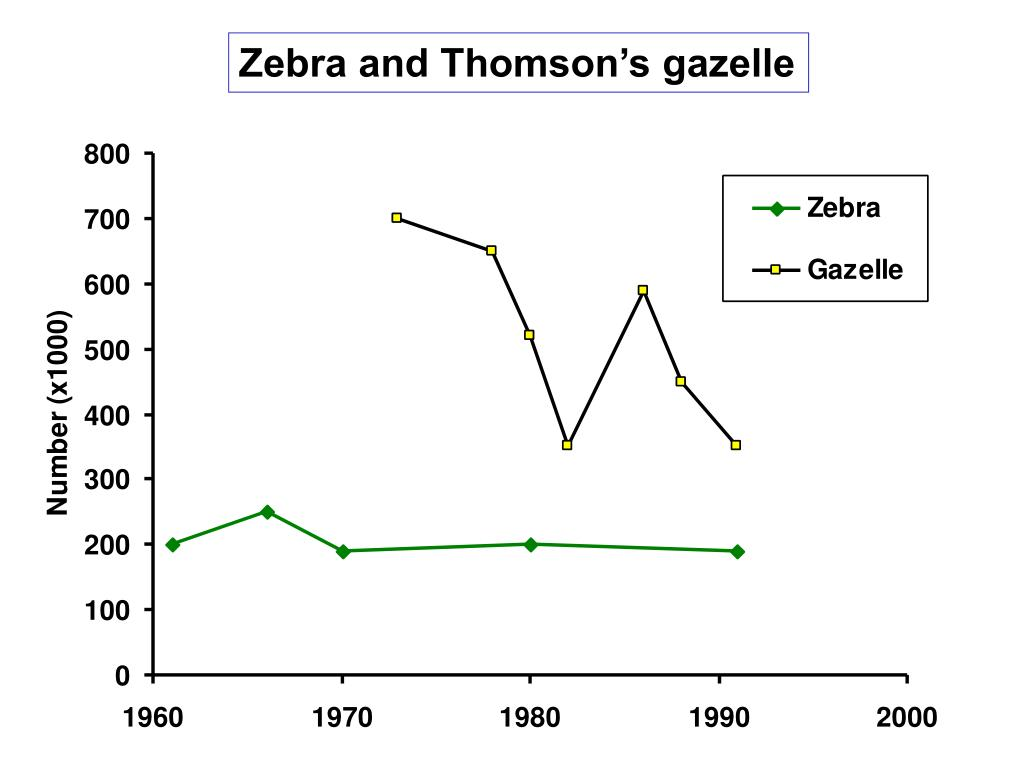 Zebra and Thomson's gazelle
