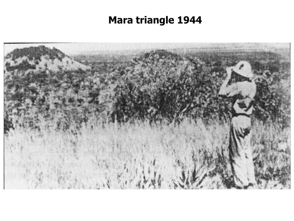 Mara triangle 1944