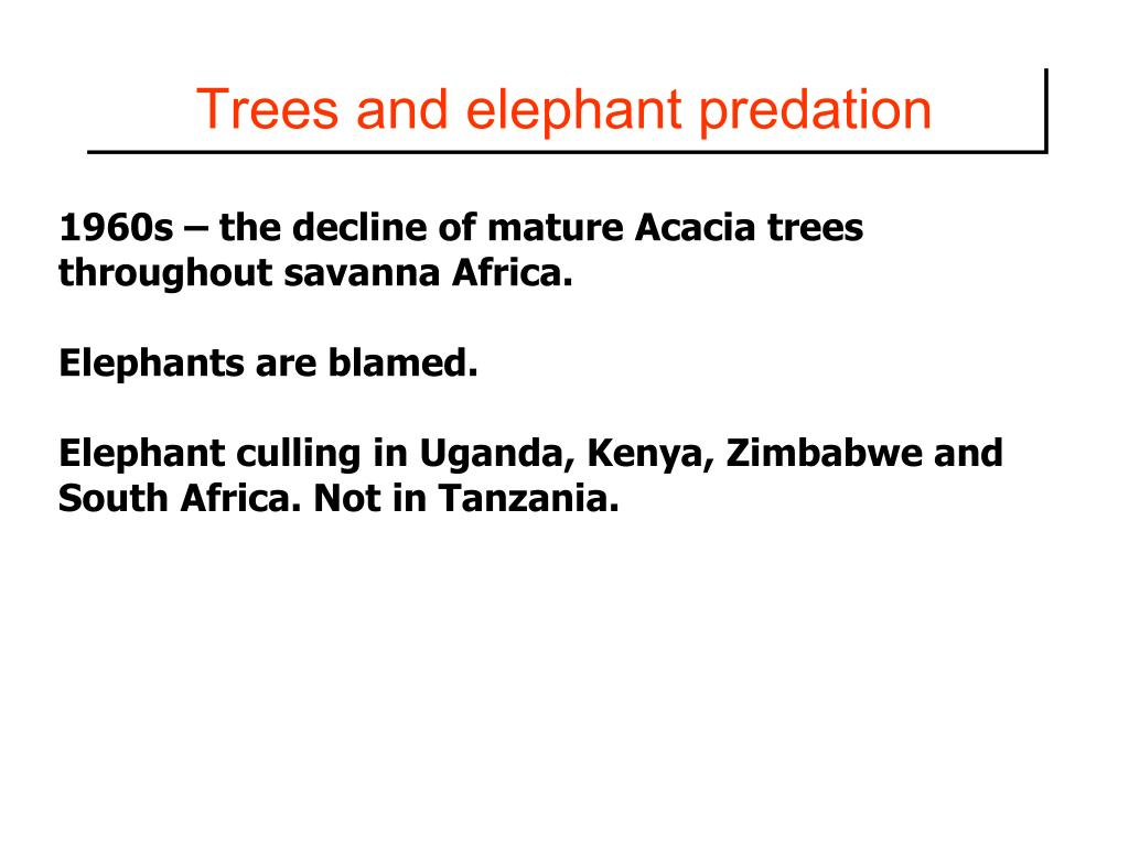 Trees and elephant predation
