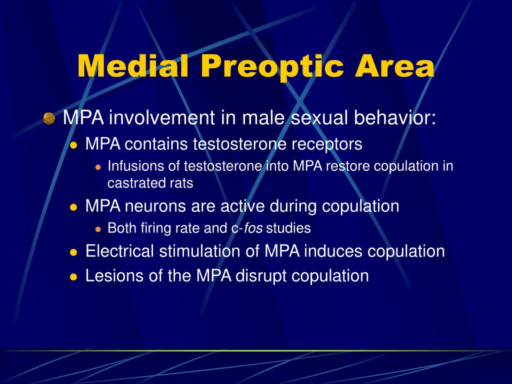 Medial Preoptic Area