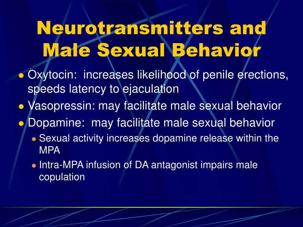 Neurotransmitters and Male Sexual Behavior