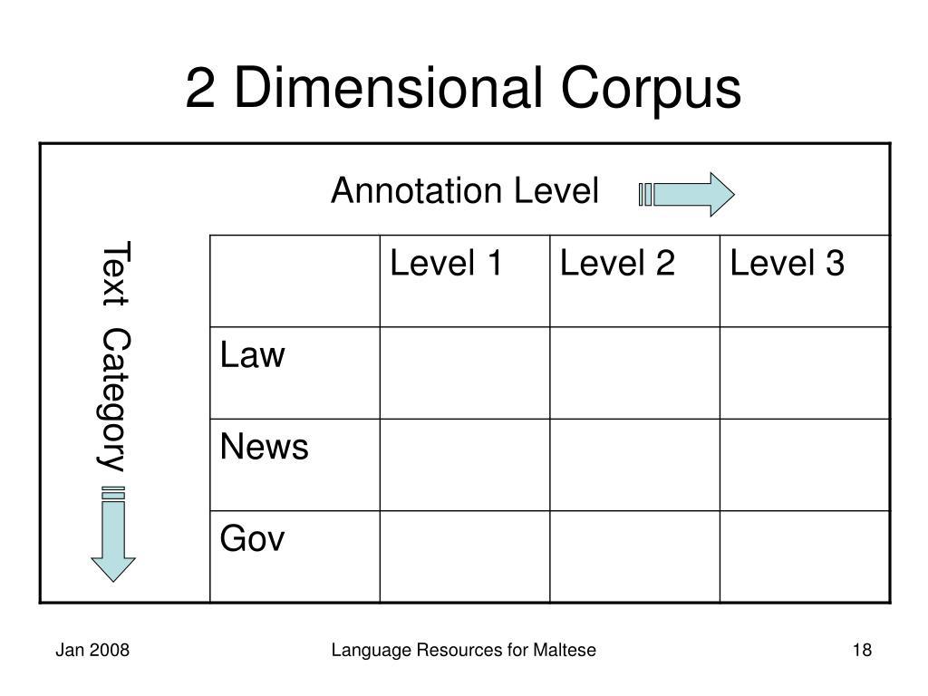 2 Dimensional Corpus