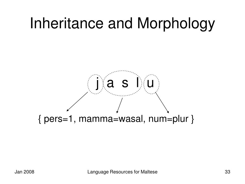 Inheritance and Morphology
