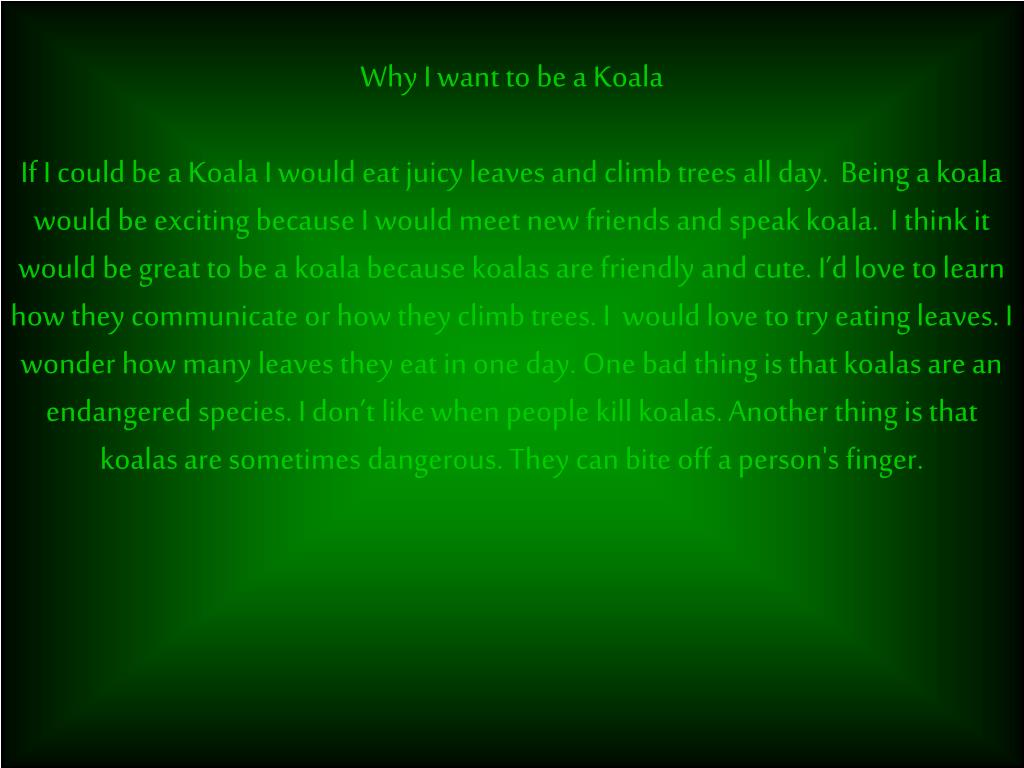 Why I want to be a Koala
