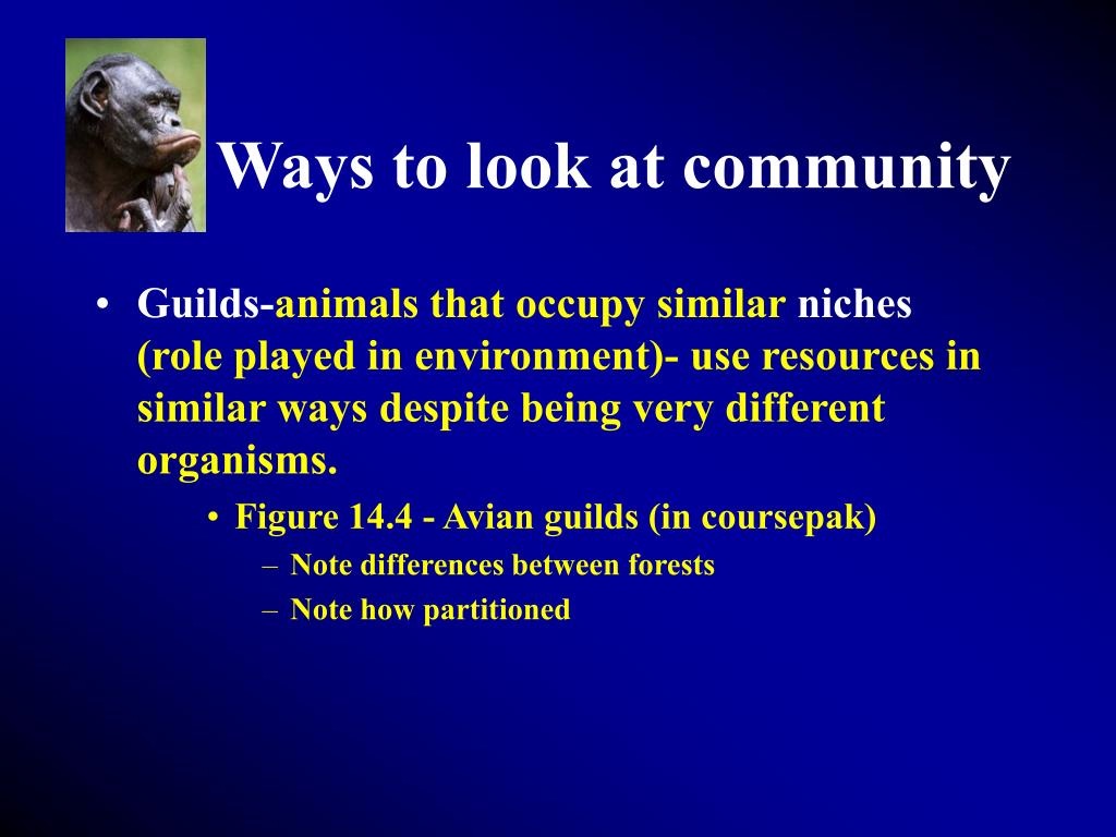 Ways to look at community