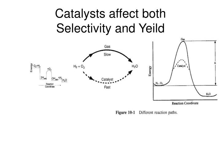 Catalysts affect both