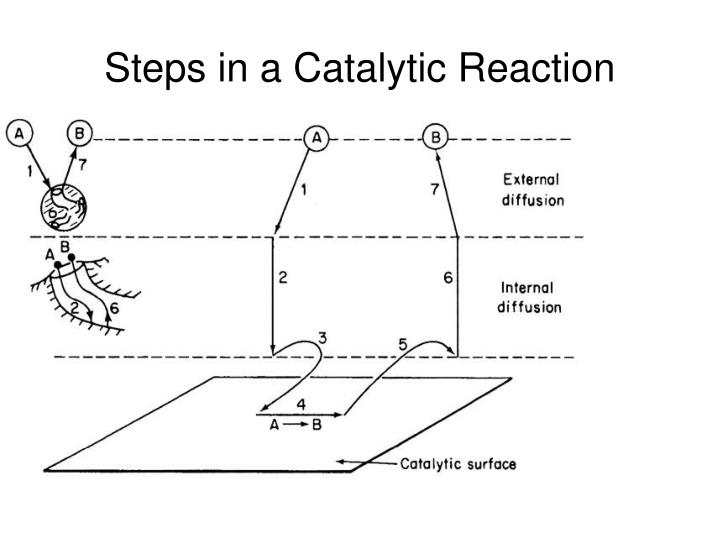 Steps in a Catalytic Reaction