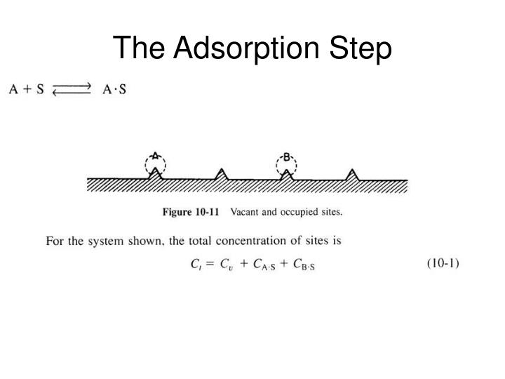 The Adsorption Step