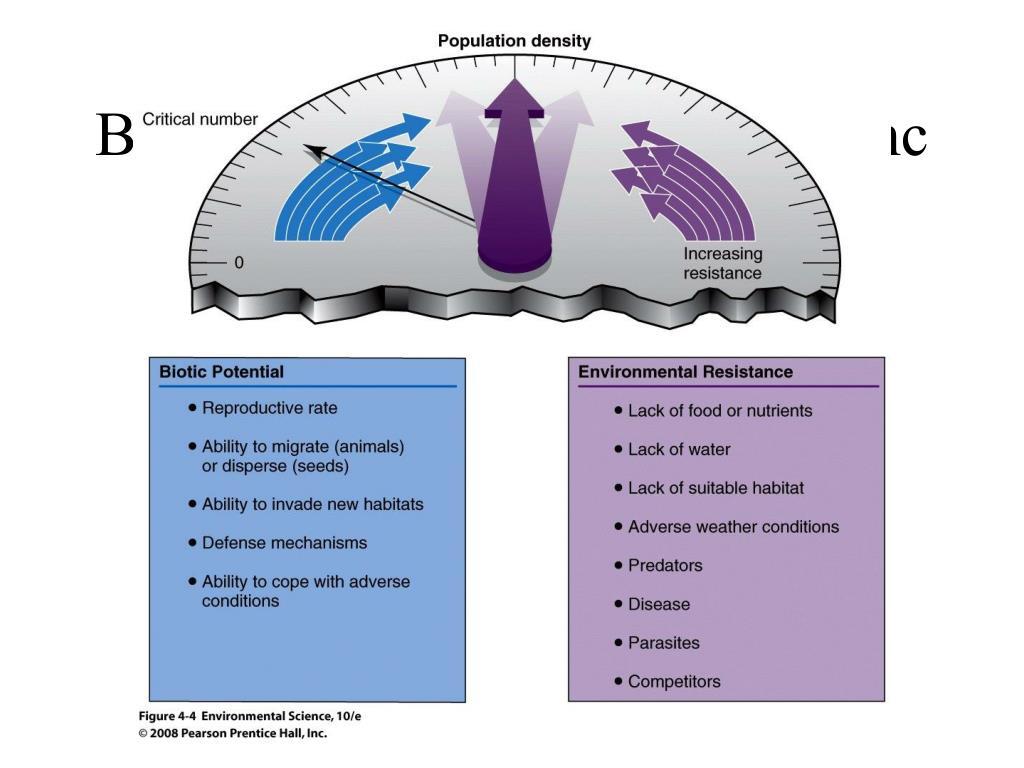 Biotic Potential v. Env. Resistanc