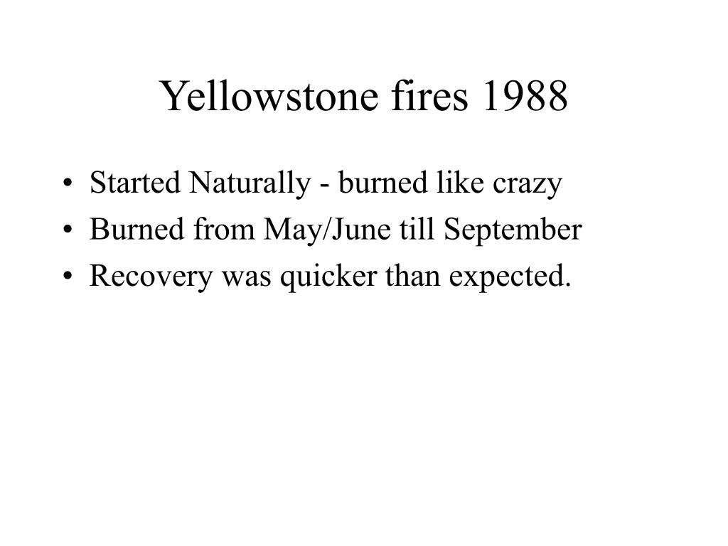 Yellowstone fires 1988