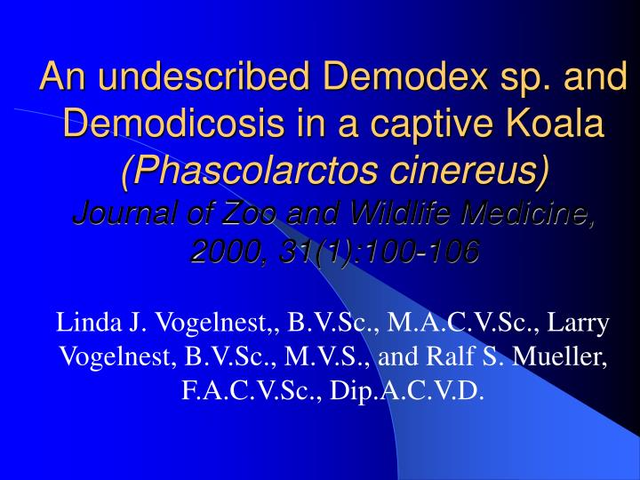 An undescribed Demodex sp. and Demodicosis in a captive Koala