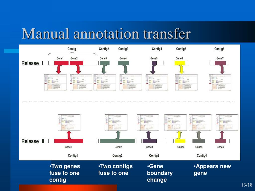 Manual annotation transfer
