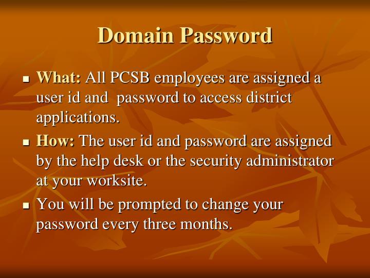 Domain Password