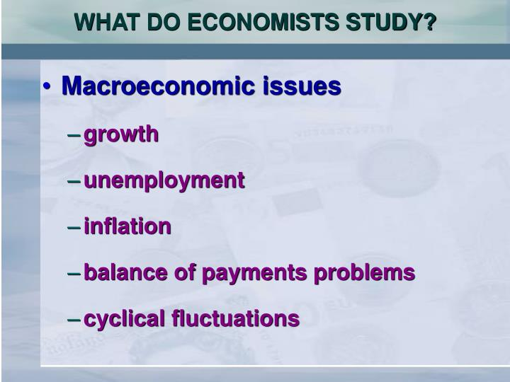 WHAT DO ECONOMISTS STUDY?