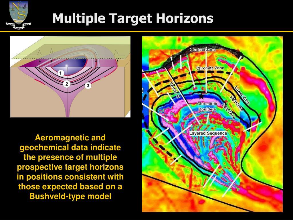 Multiple Target Horizons