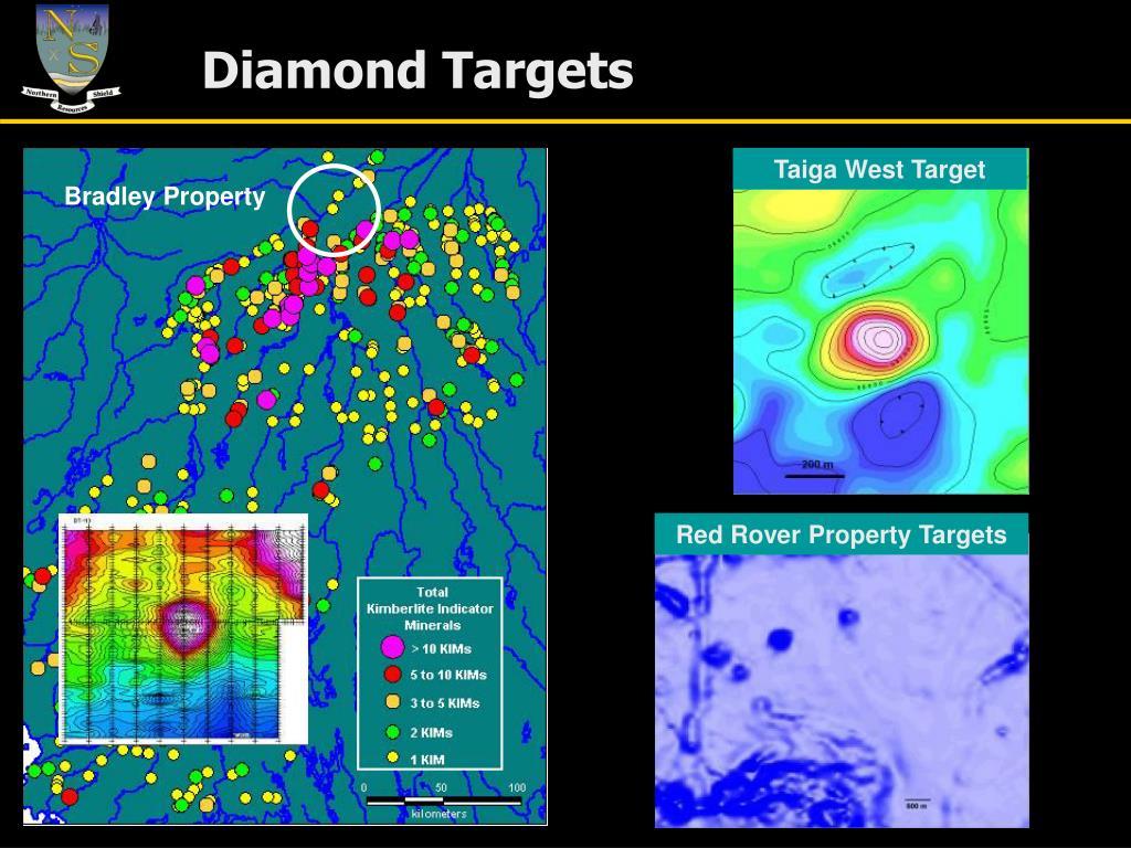 Diamond Targets