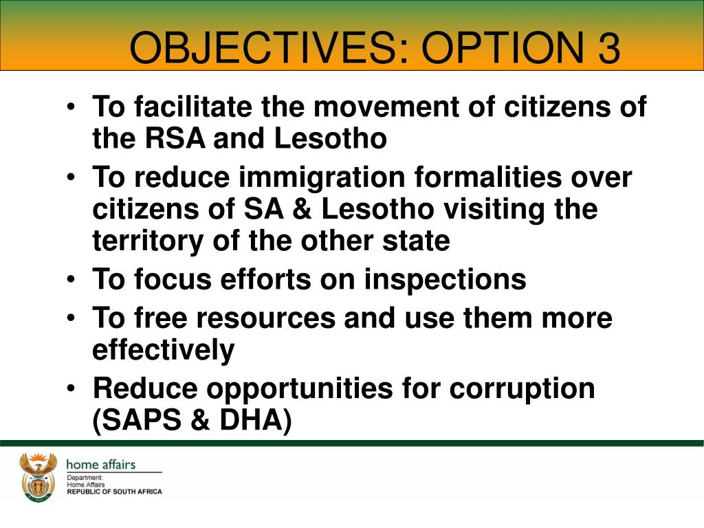 OBJECTIVES: OPTION 3
