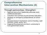 comprehensive intervention mechanisms 2
