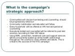 what is the campaign s strategic approach