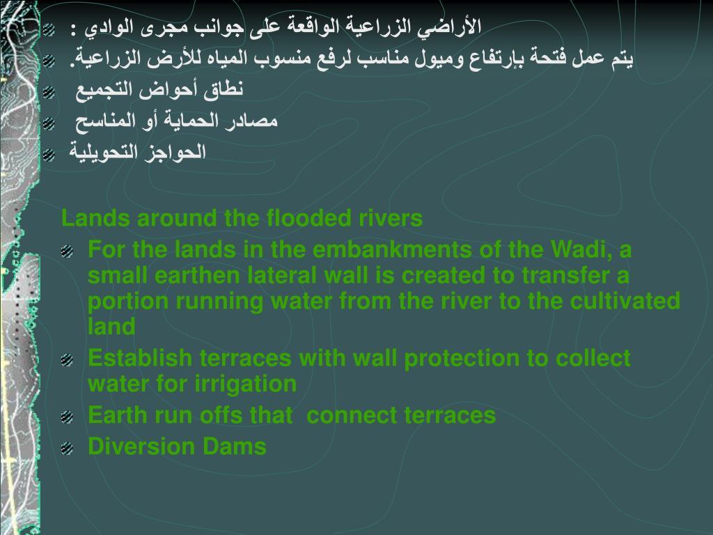 الأراضي الزراعية الواقعة على جوانب مجرى الوادي :