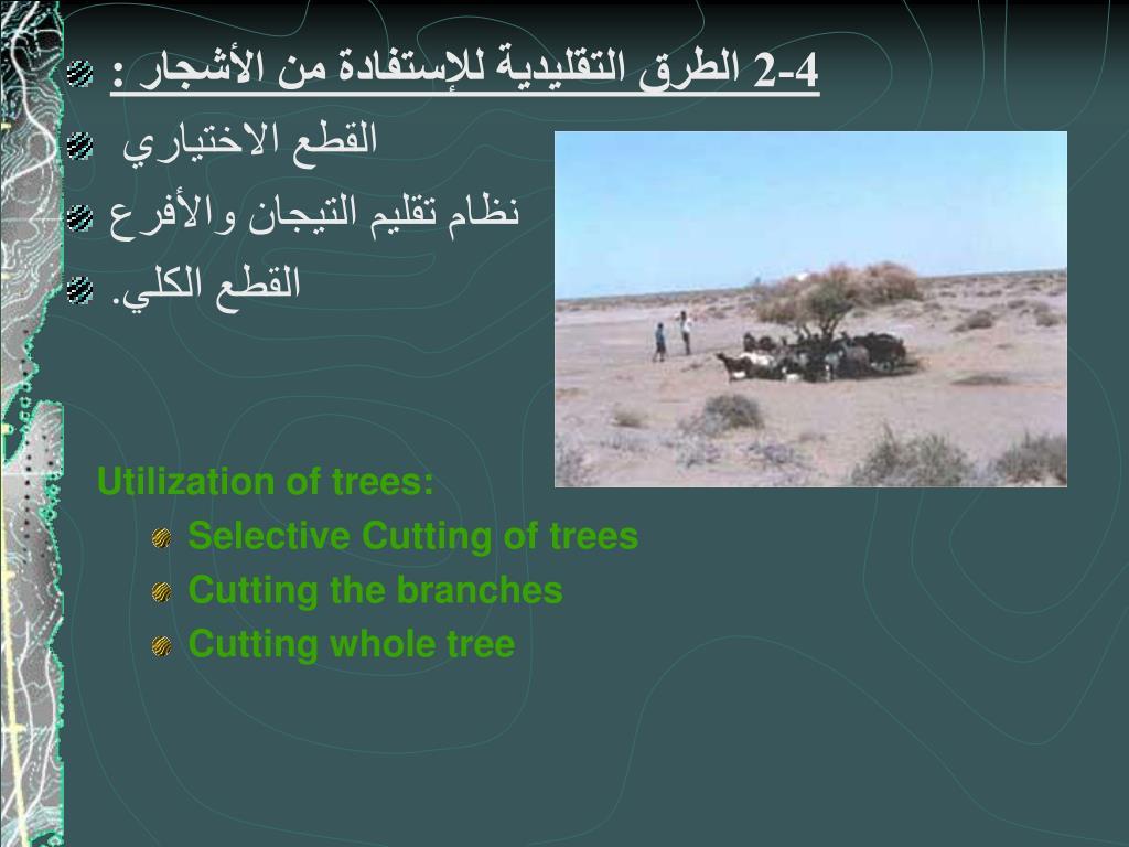 4-2 الطرق التقليدية للإستفادة من الأشجار :