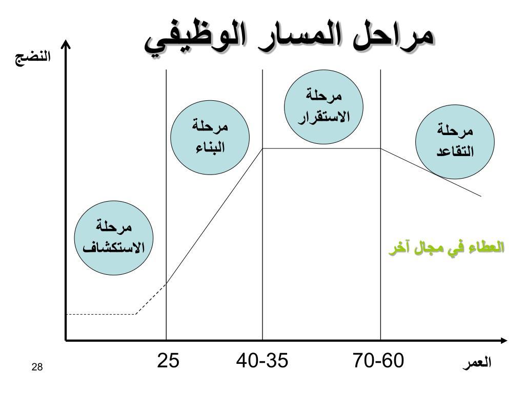 مراحل المسار الوظيفي