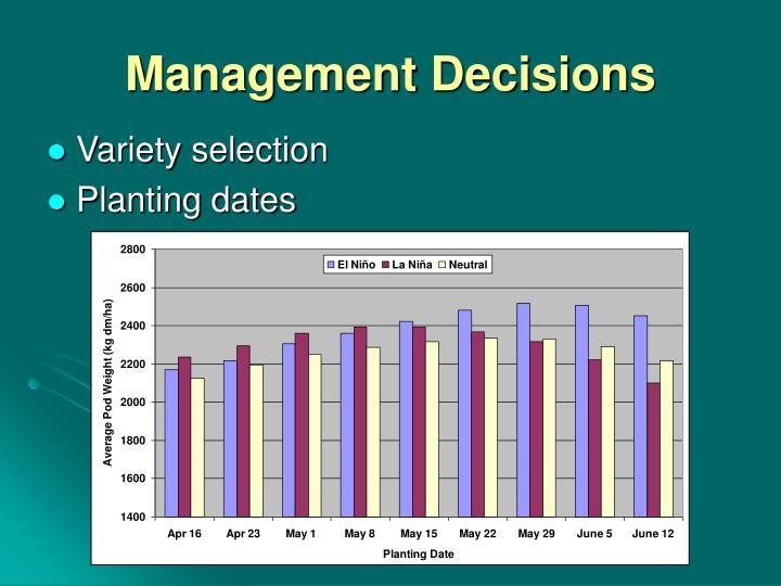 Management Decisions