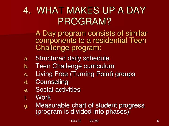 4.  WHAT MAKES UP A DAY PROGRAM?