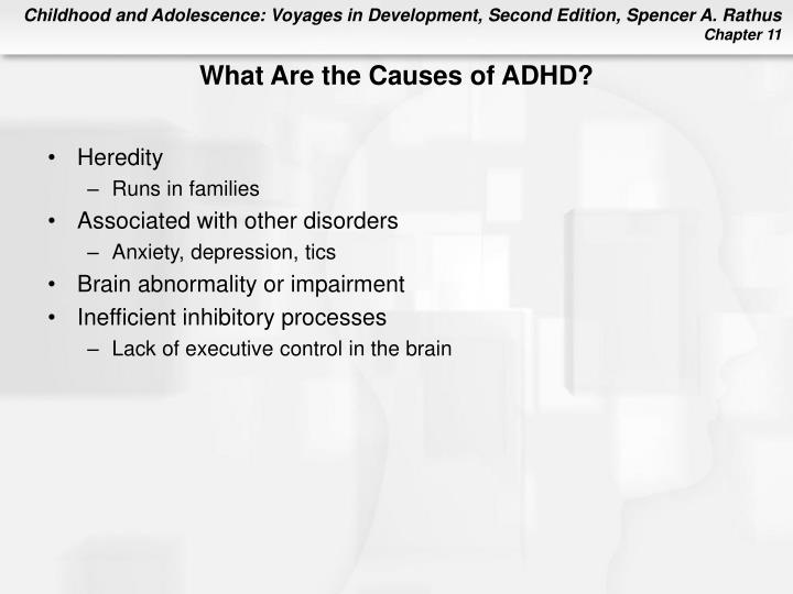 What Are the Causes of ADHD?