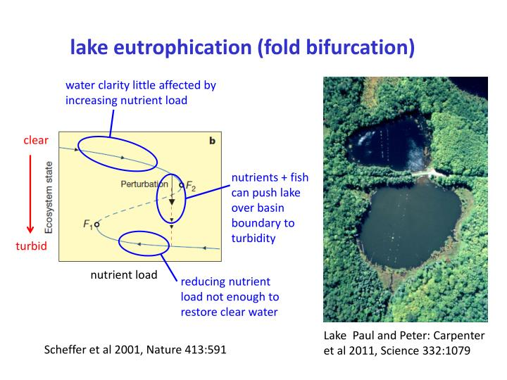eutrophication water and clear class combined