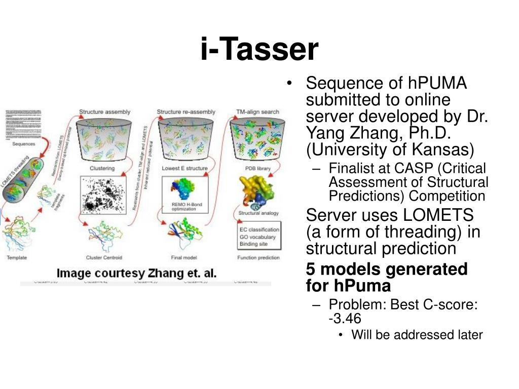 i-Tasser