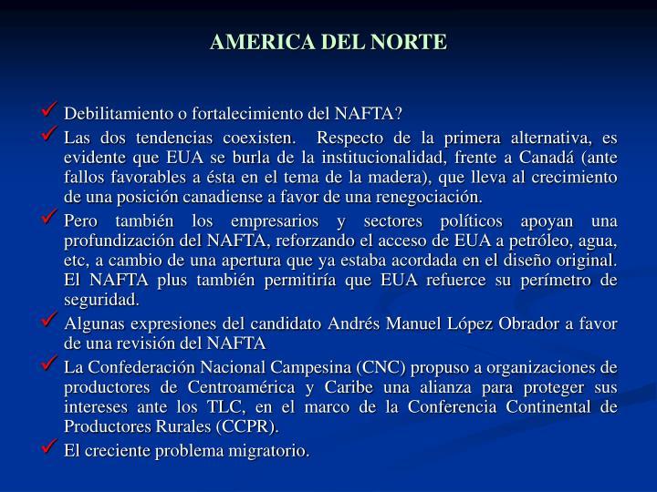 AMERICA DEL NORTE
