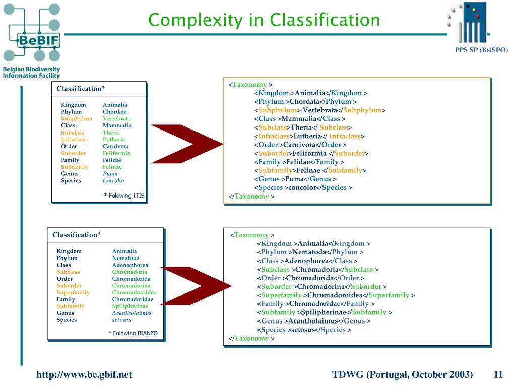Classification*