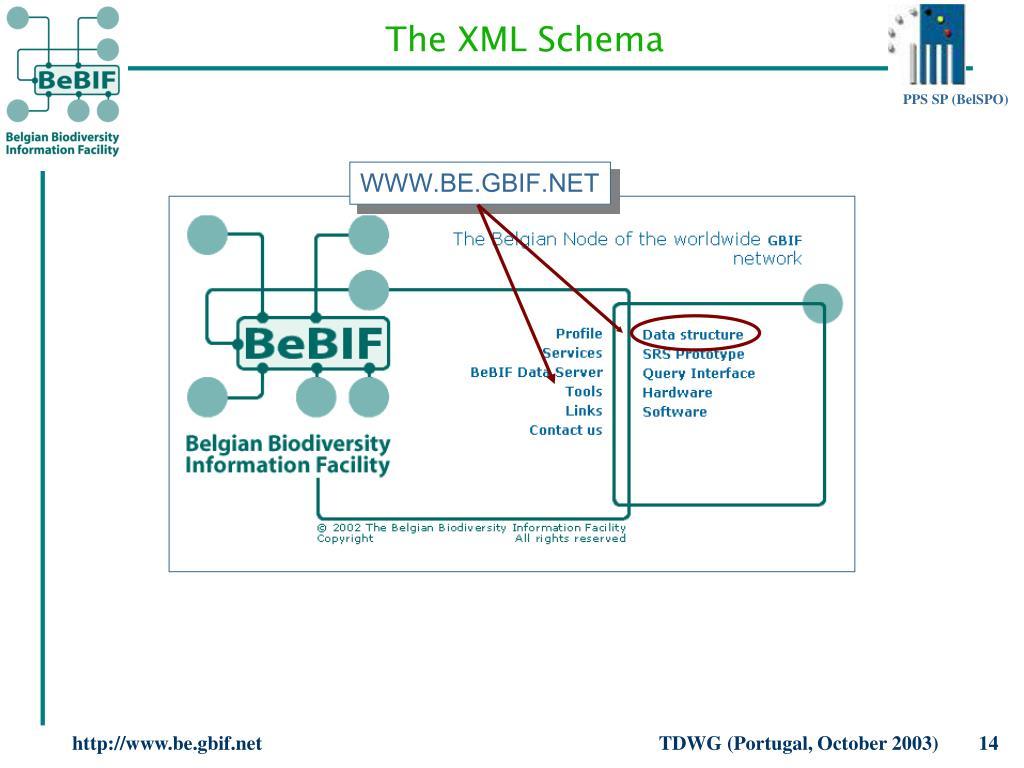 The XML Schema