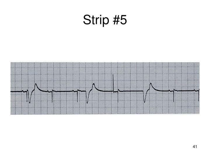 Strip #5