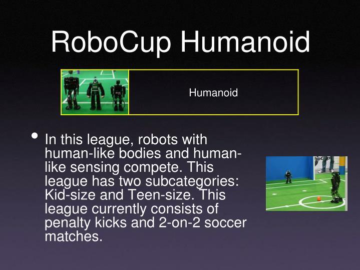 RoboCup Humanoid