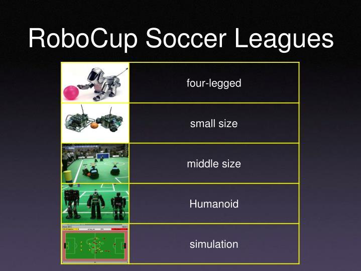 RoboCup Soccer Leagues